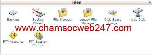 backup website
